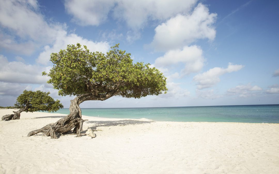 Aruba Travel Guide | The Happiest Island